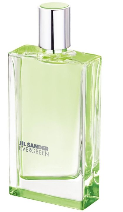 Jil Sander Evergreen