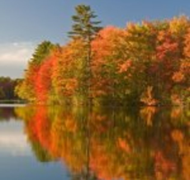 Indian Summer in Maine